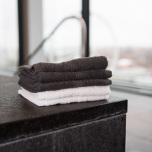 Ezra tvättlapp (4-pack)