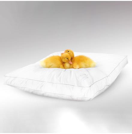 Daunlux kudde - 45x55x4 cm